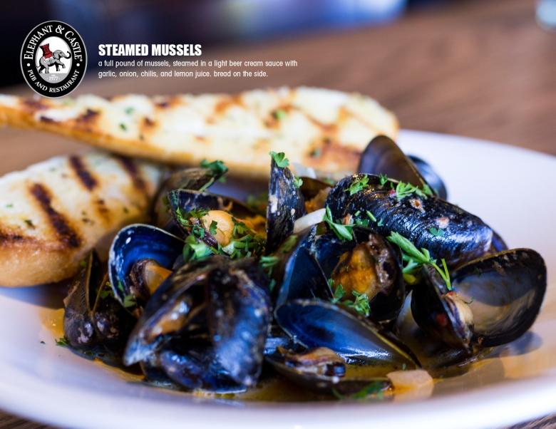 EC_SF_2015_Mussels